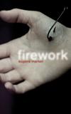 Fireworkcover5