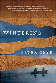 Geye - Wintering