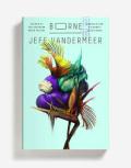 Vandermeer - borne